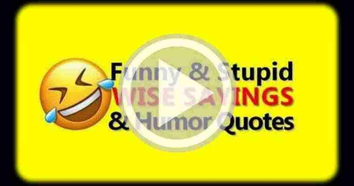 Funny Quotes Video