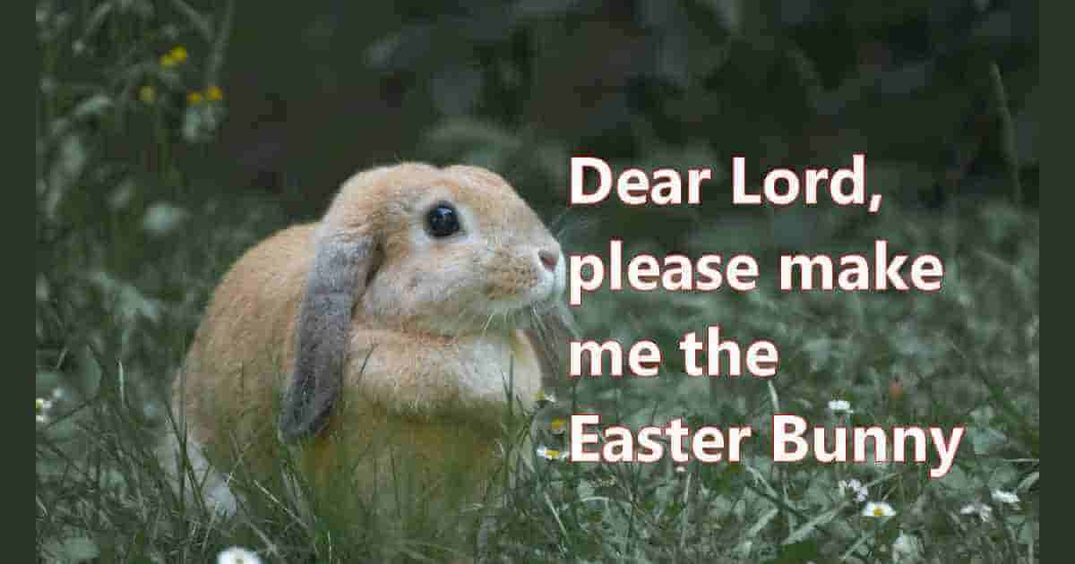 Please make me the Easter Bunny
