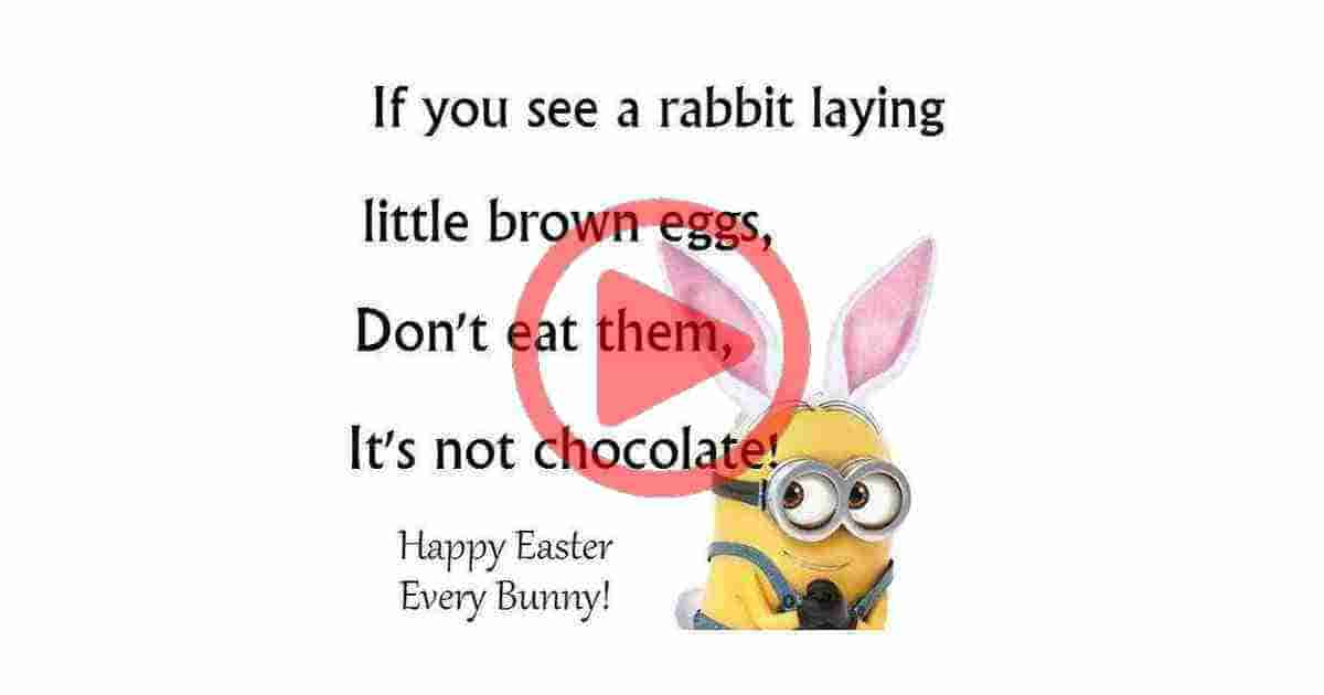 Happy Easter Funny quotes video