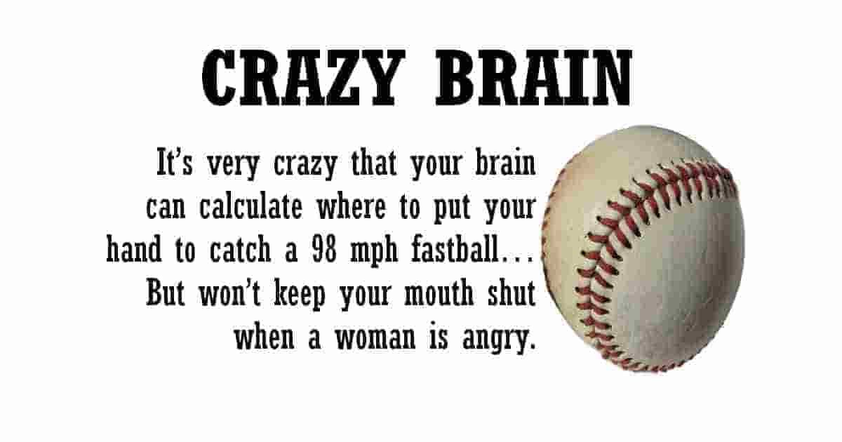 We have a very crazy brain
